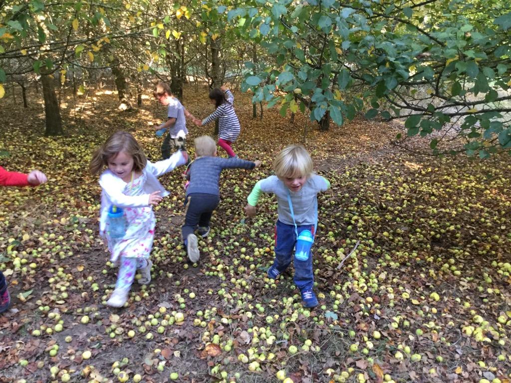 Forest School Autumn